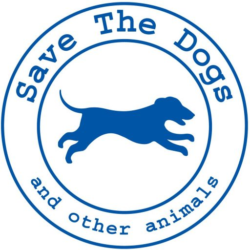 Le adozioni a distanza di Save the Dogs