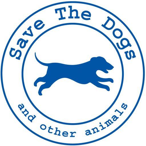 Le adozioni a distanza di Save the Dogs